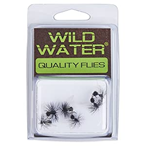 Wild Water Black Winged Ant, Size 14, Qty. 6
