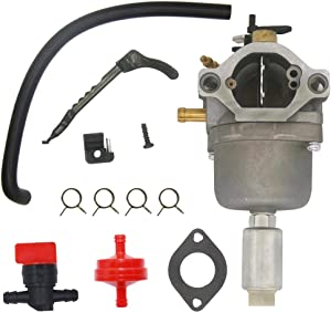 FitBest Carburetor Carb 698620 799727 for Briggs & Stratton 287707 287776 287777 310707 310777 28N707