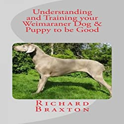 Understanding and Training your Weimaraner Dog & Puppy to be Good