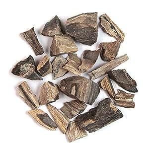 Naturosphère – minerales, fósiles-piedras, sin labrar madera o pétrifié fossilisé 2 a 4 cm-100 g