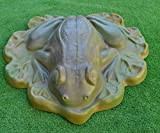 FROG Giant on Leafs MOLD CONCRETE stone garden plastic Mould #A05 Review