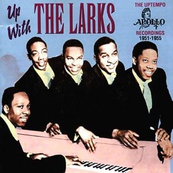 Larks - Up With the Larks - Amazon.com Music