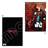 Movic D.Gray-man HALLOW Clear File / rabbi