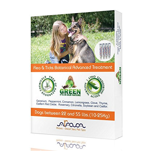 Arava Flea and Tick Control Drops Treatment for Dogs (22-55 lbs.) - Natural, Aromatherapy Medicated. Repels Pests with Natural Oils - Safe on Skin and Coats - Enhanced Defense & Prevention