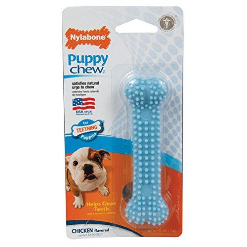 Nylabone Puppy Chew Dental Bone Chew Toy in Blue - Nylabone Regular Wishbone
