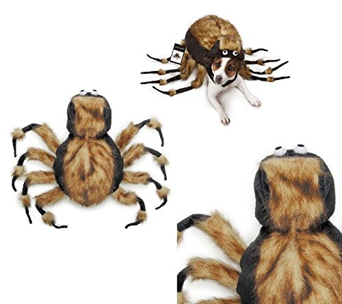 Tarantula Costumes For Dog (Fuzzy Tarantula Spider Dog Costume Dress Your Pup As Your Favorite Arachnid !(Large))