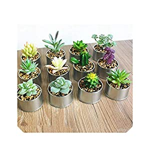 Vase Succulent Plants Set Real Touch Mini Palm Bonsai Artificial Fleshiness Cactus Flower for Table Decoration 5
