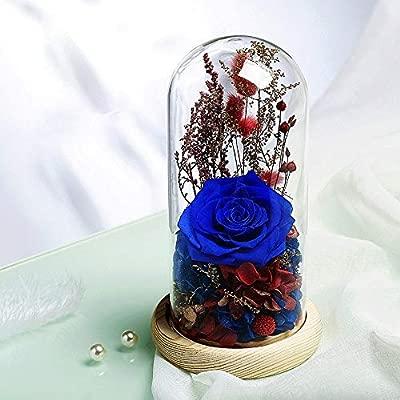 KYEEY Flor Eterna Rosas Nunca marchitas en cúpula de Cristal ...