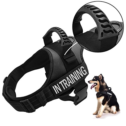 TOPPLE in Training Vest Harness-Reflective Vest with Comfortable Handle for Large Medium Small Dogs,Purchase Come with Extra 2 Patches for Service Dog (M:Chest 25-31,Neck 20-26)