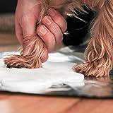 Pearhead Pet Paw Print Dog or Cat Paw Print Hanging DIY Keepsake