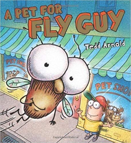 Pet for Fly Guy, A