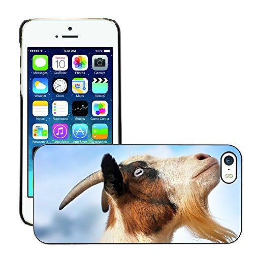 Premio Sottile Slim Cassa Custodia Case Cover Shell // V00001714 ciel chèvre // Apple iPhone 5 5S 5G