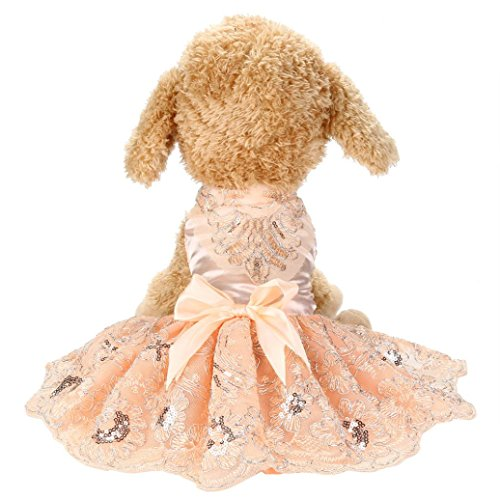 Wakeu Pet Clothes, Small Dog Girl Dress Puppy Sequins Embroidered Lace Tutu Clothes Wedding (XL, Pink) (Vest Maltese Embroidered)
