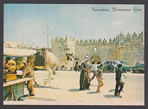 Jerusalem Damascus Gate Israel postcard 1970s