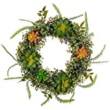 Lvydec Artificial Succulent Wreath, 14 Inch Fake Boxwood Wreath with Red and Green Succulent Plants for Front Door Wall Home Decor