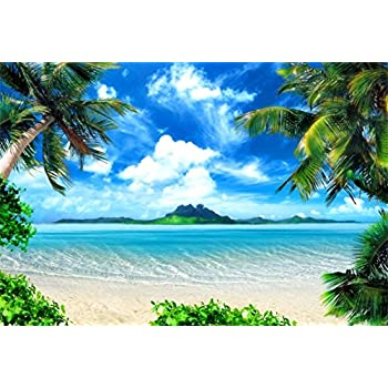 Amazon.com : AOFOTO 8x6ft Tropical Beach Photography