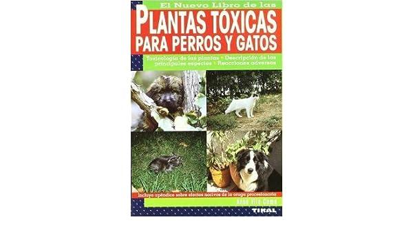 EL NUEVO LIBRO DE LAS PLANTAS TOXICAS PARA PERROS Y GATOS. EL PRECIO ES EN DOLARES: ANNA VILA COMA: Amazon.com: Books