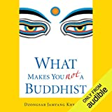 Bargain Audio Book - What Makes You Not a Buddhist