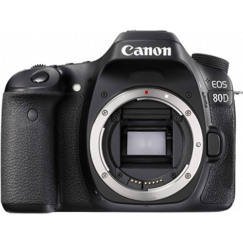 Canon EOS 80D DSLR Camera (Body Only) + Sony 16GB SDHC Card + Sony 32GB SDHC Card + Tripod + Flash + Canon EOS Shoulder Bag 100ES + Card Reader + Cloth Bundle -  GreensCameraWorld, 1263C004--3