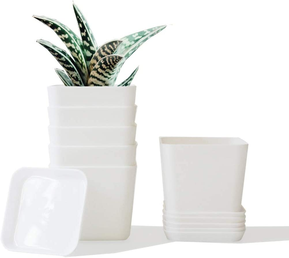 UKAN 3.5 inch Plant Pots with Drainage Plastic Planter Gardening Pot (6-Pack) Modern Decorative Flower Pots for Indoor Plants, Succulents, Herbs, Flowers, Square Shape, White