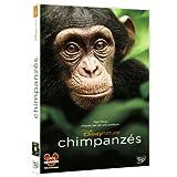 """Afficher """"Chimpanzés"""""""