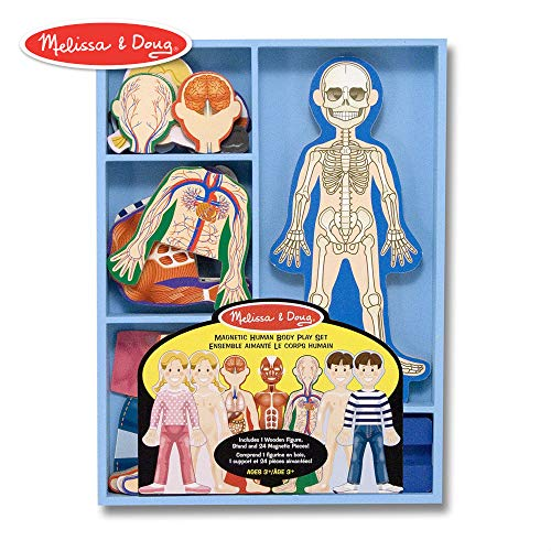 Melissa & Doug Magnetic Human Body Anatomy Play Set (Anatomically Correct Boy and Girl Magnets, 24 Magnetic Pieces and Storage Tray) (Human Body Game)