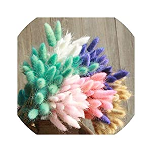 30Pcs/lot Natural Dried Flowers Colorful Real Flower Bouquet for Home Wedding Decoration Rabbit Tail Grass Bunch 44