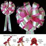 PINK GREEN WEDDING 8'' PULL PEW BOW BRIDAL DECORATION
