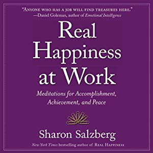 Real Happiness at Work Audiobook