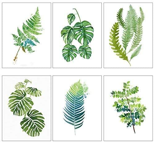 Amazon Com Meishe Art Modern Poster Print Tropical Leaf Watercolor Painting Palm Monstera Green Leaves Botanical Plant Popular Home Wall Decor 6pcs Posters Prints Find over 100+ of the best free tropical leaves images. meishe art modern poster print tropical leaf watercolor painting palm monstera green leaves botanical plant popular home wall decor 6pcs