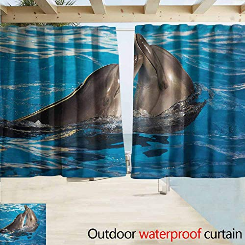 Dolphins Blinds - Zmcongz Dolphin Window Blind Aqua Show Pair of Valentines Dolphins Dancing in Pool Animal Tenderness Love for Patio/Front Porch W55 xL63 Blue Dark Taupe
