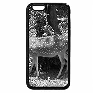 iPhone 6S Case, iPhone 6 Case (Black & White) - Sika deer