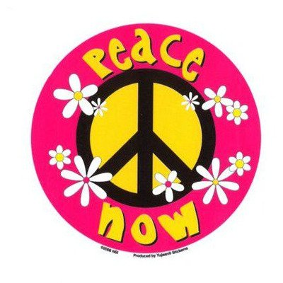 Peace Now with Daisies - Sticker / Decal