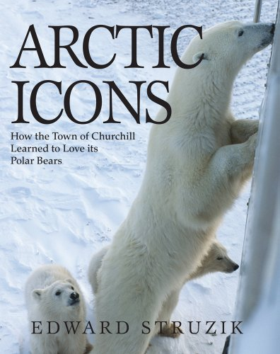 Arctic Icons: How the Town of Churchill Learned to Love its Polar Bears Churchill Manitoba Canada