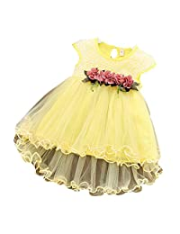 FUNOC Baby Girls Floral Party Ball Gown Lace Tutu Formal Dresses Sundress