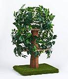 CatHaven Cat Condo Medium Tree Square Base