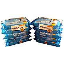 Equate Flushable Wipes 10-pack of 48 Ea. (480ct