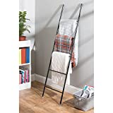 iDesign Forma Free Standing Bath Towel Ladder