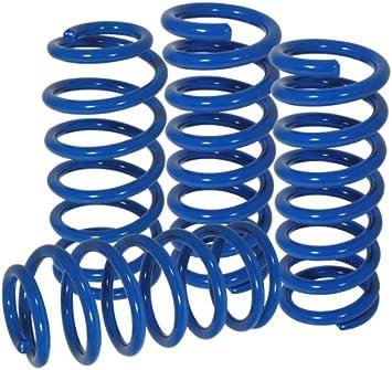 Blue AJP Distributors High Performance Suspension Racing Track Lowering Springs Spring For 2005 2006 2007 2008 2009 2010 2011 2012 2013 2014 05 06 07 08 09 10 11 12 13 Ford Mustang GT Cobra GT500