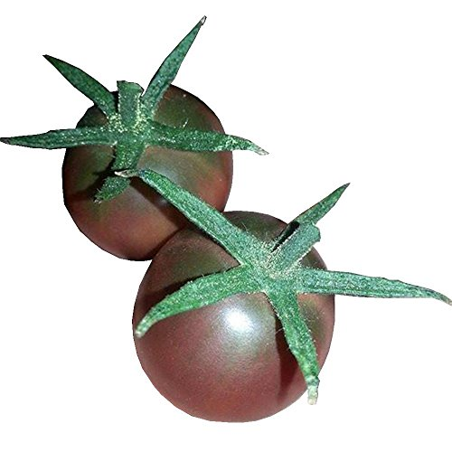 (Chocolate Cherry Seeds by Pepper Joe's - 20+ Tomato Seeds Per Pack)