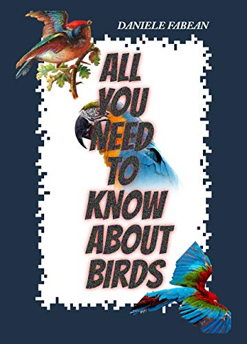 All You Need To Know About Birds
