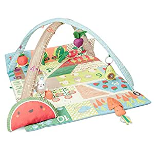 Skip Hop Farmstand Grow and Play Activity Gym, Multicolor,