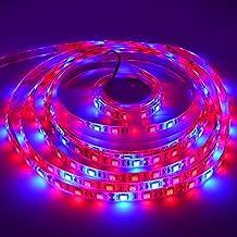 LED Strip Light 5050 Super Bright Aquarium Coral 5M 300LEDs Spool Waterproof LED Plant Grow String Lights DC 12V Blue + Red Color String light (3Red 1Blue,IP65)