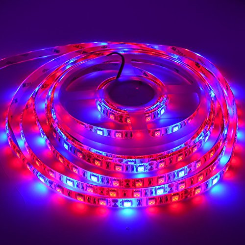 Super Bright Led Grow Lights