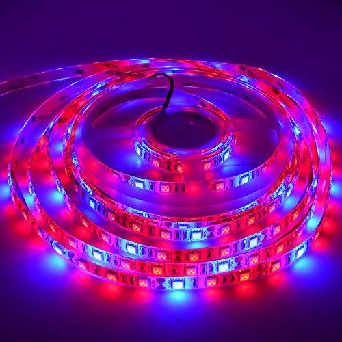 NEWSTYLELIGHTING 5050 Super Bright Aquarium Coral LED Strip Light 5M 300LEDs/spool Waterproof LED Plant Grow String Lights DC 12V Blue + Red Color String light (Red:Blue = 3:1) … For Sale