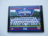 """2016 WORLD SERIES CHAMPIONS CHICAGO CUBS WRIGLEY FIELD TEAM PHOTO MOUNTED ON A """"9 X 12"""" BLACK MARBLE PLAQUE"""