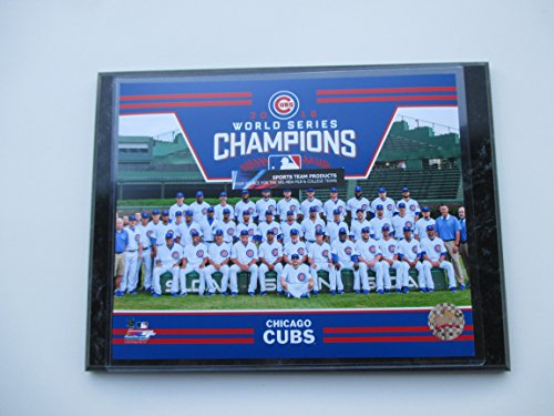 2016 WORLD SERIES CHAMPIONS CHICAGO CUBS WRIGLEY FIELD TEAM PHOTO MOUNTED ON A