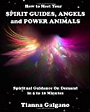 How to Meet Your SPIRIT GUIDES, ANGELS and POWER ANIMALS, Tianna Galgano, 1479170933