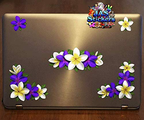 Boats ST045PL/_3 Purple // White Frangipani Corners Vinyl Large Sticker Pack For Laptop Caravans,Trucks JAS Stickers/® FLOWER PLUMERIA Car Decals