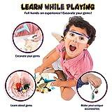 Gem dig kit with 12 Real Gemstones for Kids